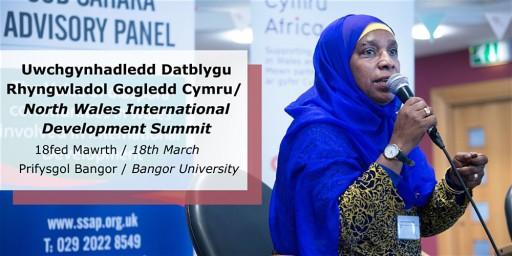 North Wales International Development Summit / Uwchgynhadledd Datblygu Rhyngwladol GogleddCymru